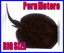 画像1: ペルーモトロ XL